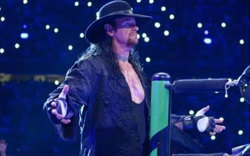 undertaker-249224