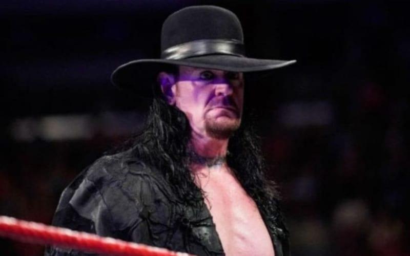undertaker-482844288