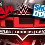 raw-smackdown-tlc