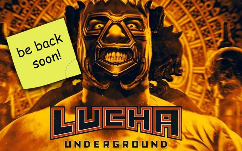 lucha-undergrund-back