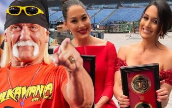 Hulk Hogan Couldn't Tell The Bella Twins Apart