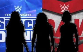 WWE Cancelled Plans For All-Female Faction