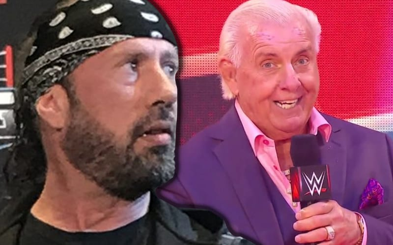 sean-waltman-ric-flair-9