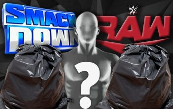 Ex WWE Diva Says She Blamed The Wrong Person For Sending Belongings Back In Trash Bags